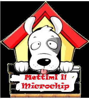 mettimi il microchip